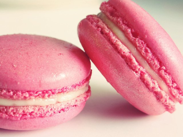 Political macarons, new record for rosé and fight against processionary erupts